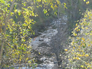Spearfish Canyon 1